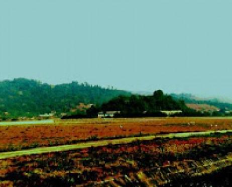 Foto di Puer, Yunnan (SYM)