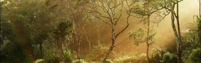 Lake Gunung