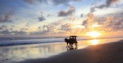 Pantai Samas Bantul