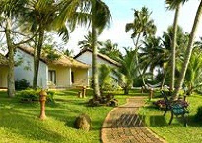 Abad Whispering Palms