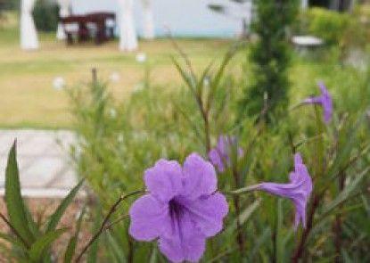 Addera Residence Hua Hin
