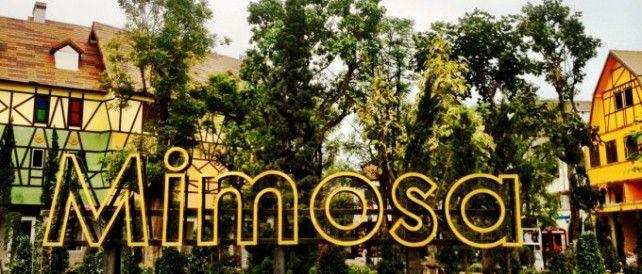 Admission Ticket to Mimosa Pattaya