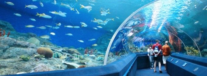 harga tiket Admission to Underwater World Pattaya