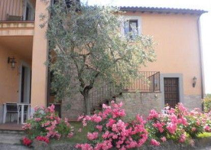 Agriturismo Poggio Degli Olivi - Guest House