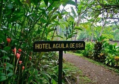 Aguila De Osa Inn