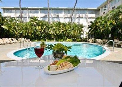 Airport Honolulu Hotel Teras
