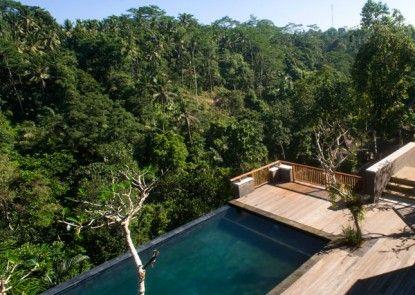 Alam Ubud Culture Villa and Residence Teras