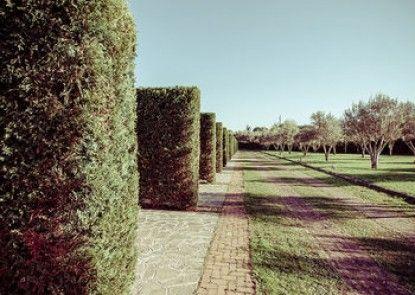 All Ways Garden & Leisure Hotel