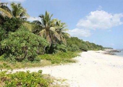Alofa Beach Bungalows