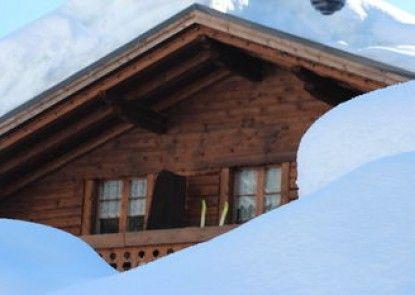 Alpin Haus