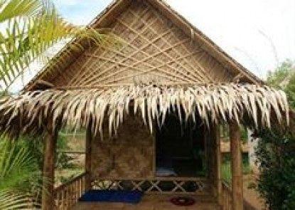 Amazon Bungalow