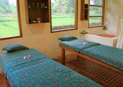 Anini Raka Resort Ubud Teras