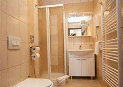 Apartments Vila Piranesi