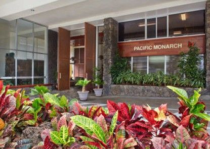 Aqua Pacific Monarch