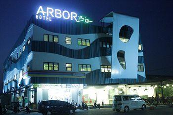 Arbor Biz Hotel, Maros