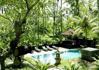 The Artini Resort (Formerly Artini 3 Cottages) Pemandangan