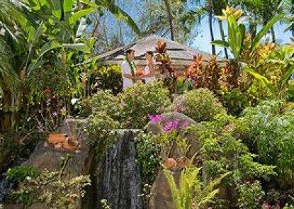Aston Kaanapali Shores Teras