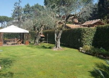 Aurelia Garden Gold Bed & Breakfast