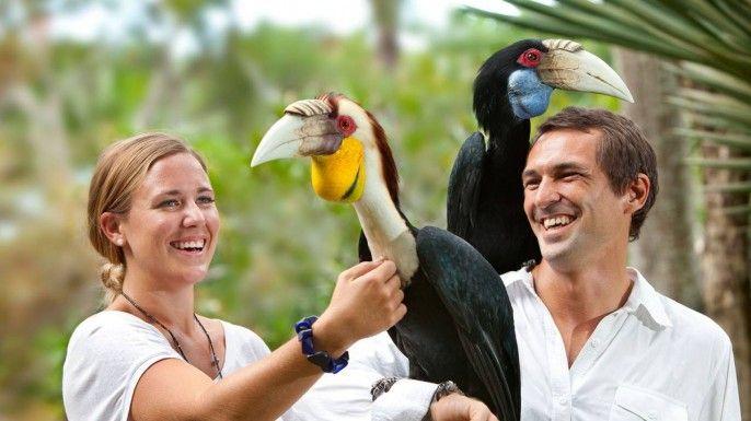 harga tiket Bali Bird Park E-voucher