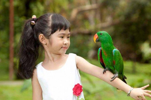 Bali Bird Park E-voucher