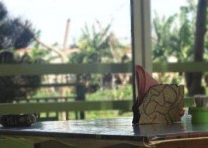 Bali Contour Guest House Teras