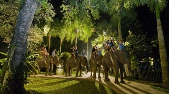 Bali Elephant Safari Under The Stars (NSR)