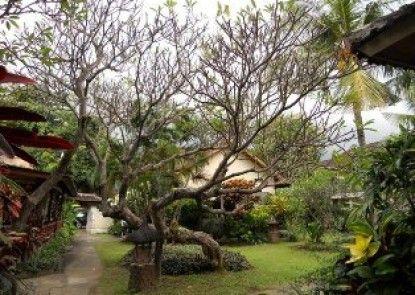 Bali Lovina Beach Cottages Lain - lain