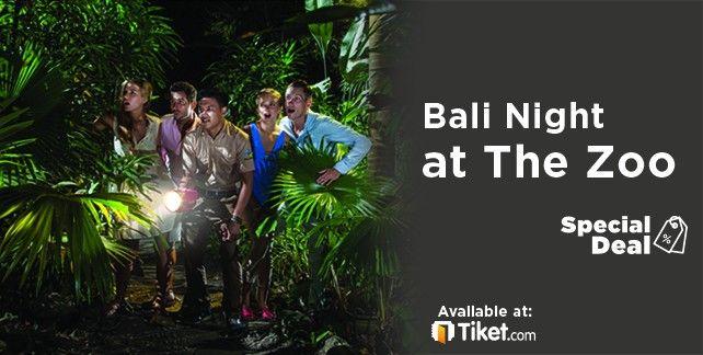 Bali Night at the Zoo
