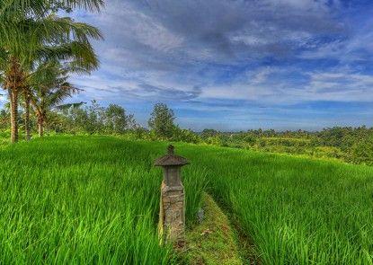 Bali Rich Villas Ubud & Spa Teras