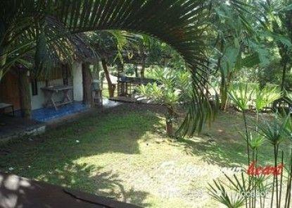 Banpak Phusuay
