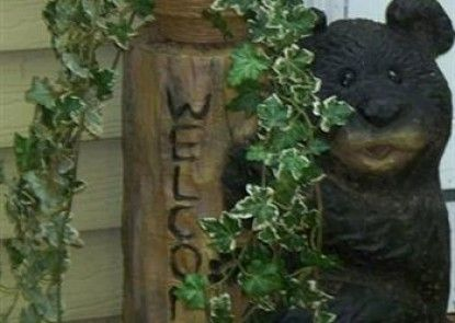 Bear House Bed and Breakfast