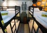 Pesan Kamar Family (4 Bunk Beds) di Beehive Phuket Old Town - Hostel