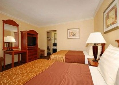 Best Western Hollywood Plaza Inn Teras