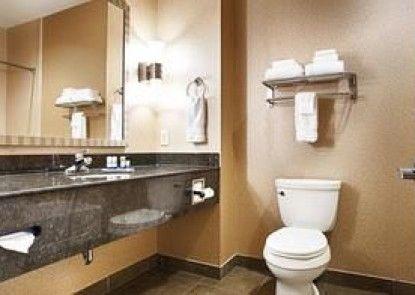 Best Western Plus Texarkana Inn & Suites