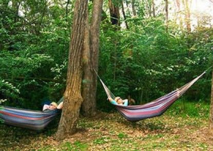 Bingle Tree Retreat