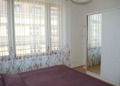 Bright spacious apartment