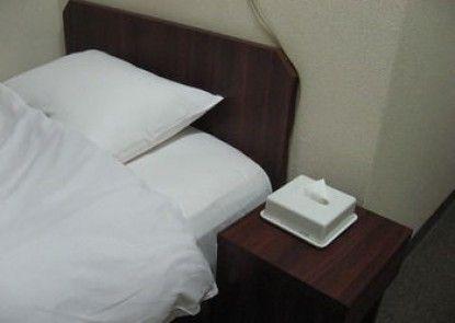 Business Hotel Shinsuma