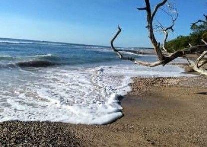 Cabinas La Playa