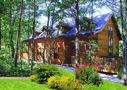 Cabins At Grand Mountain By Thousand Hills Resort Teras