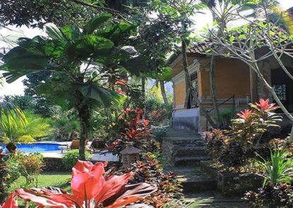 Cepik Villa Teras