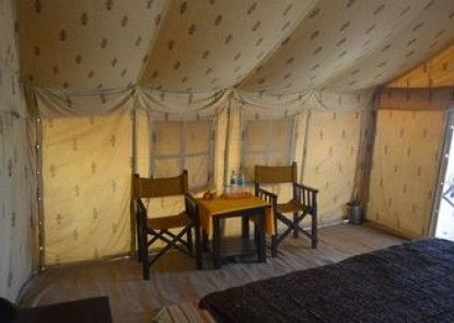 Colonel\'s Camp Oasis India