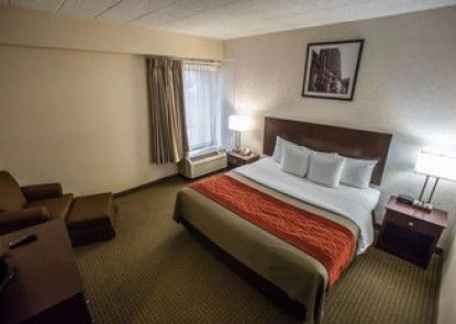 Comfort Inn O\'Hare - Convention Center