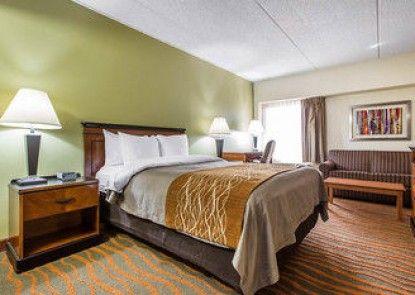 Comfort Inn Conyers