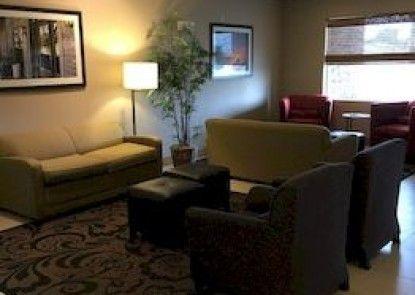 Comfort Inn Garden City
