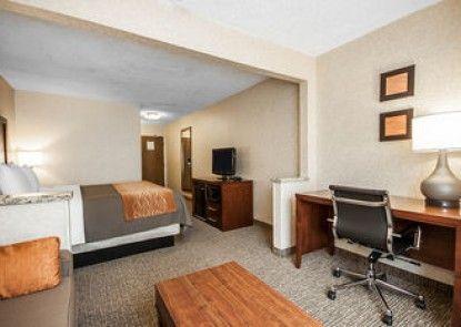 Comfort Inn Pocatello