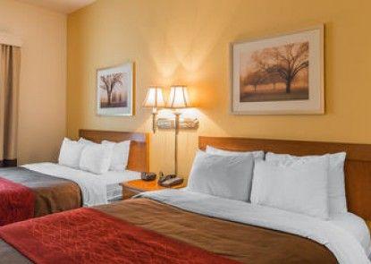 Comfort Inn & Suites Rifle