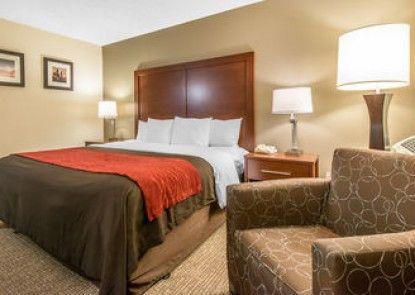 Comfort Inn & Suites Stapleton