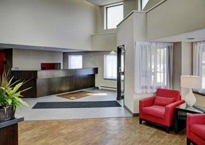 Comfort Inn West Edmonton