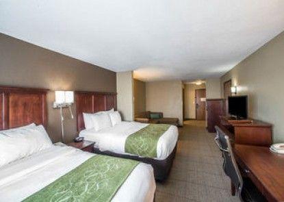 Comfort Suites Columbia - University Area