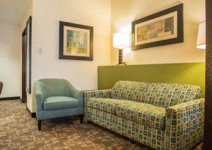 Comfort Suites Lake City